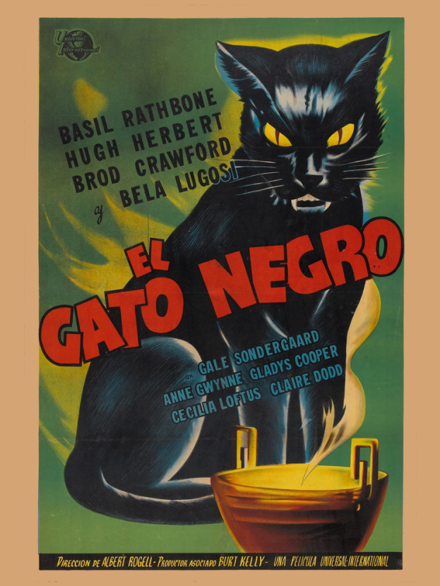 El Gato Negro | Черный кот